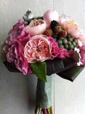 austin_rose_14
