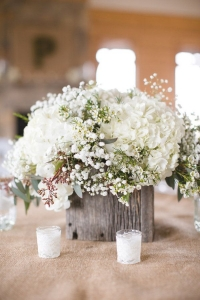 babys_breath_wedding_24