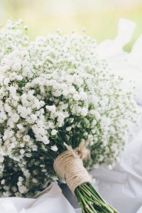 babys_breath_wedding_29