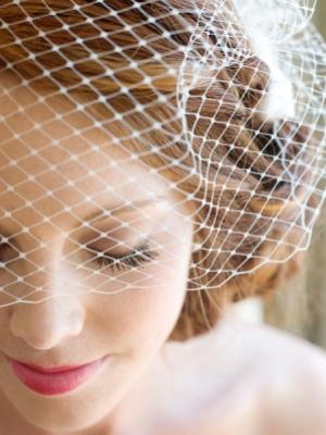 birdcage_veil_20