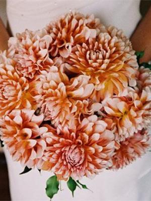 dahila-bouquet