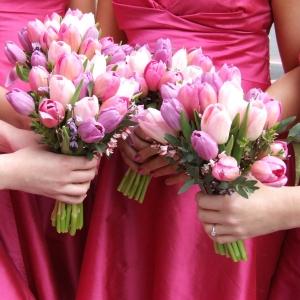 buket-tulip10