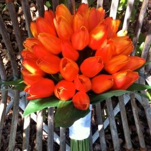 buket-tulip14