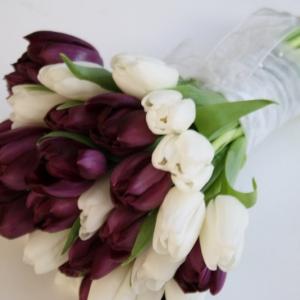 buket-tulip21