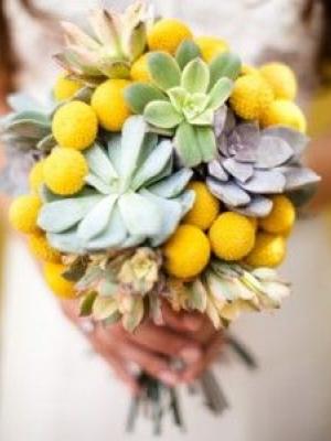 crasedia_bouquet_03