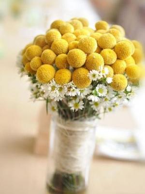 crasedia_bouquet_15