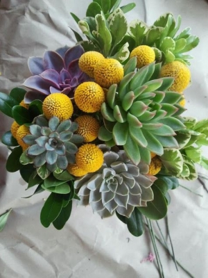 crasedia_bouquet_39