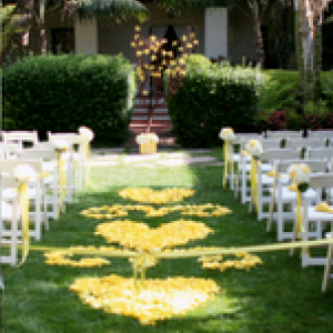ayd-yellow-brunch-wedding