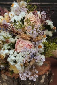 dried_flowers_12