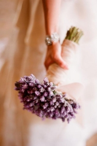 dried_flowers_25
