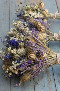 dried_flowers_29
