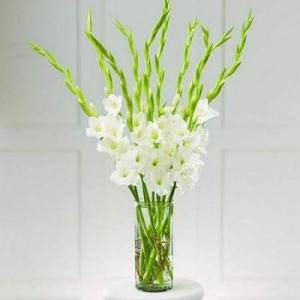 gladiolusy-v-svadebnoj-floristike-15