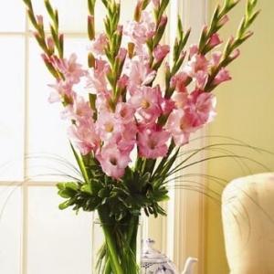 gladiolusy-v-svadebnoj-floristike-8