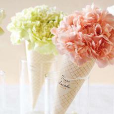 carnation-cones