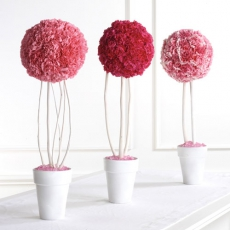 carnation-topiary