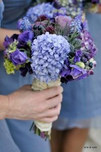 hyacinth_08
