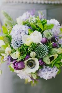 hyacinth_24