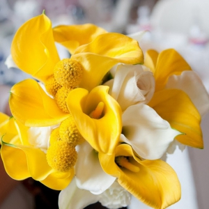 yellow-calla-lily-billy-ball-wedding-bouquet1