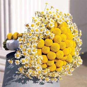 yellow-wedding-decorations1