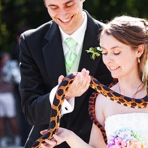 pitomcy-na-svadbe-17