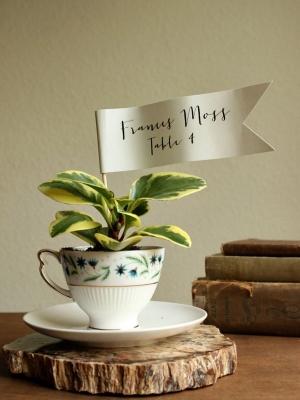 plants_31