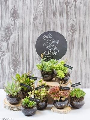 plants_35