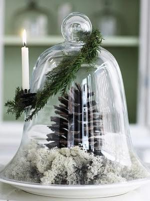 svadba-zima-shishki-0021