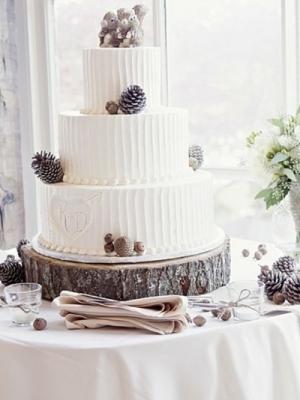 svadba-zima-shishki-0053