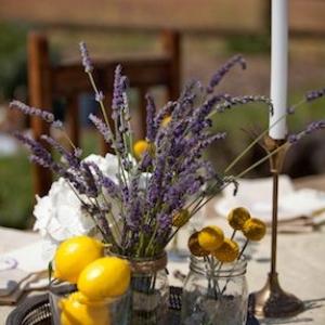 svadba-limon-lavanda-09