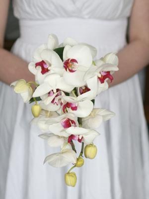 svadebnyj-buket-iz-orhidej-36