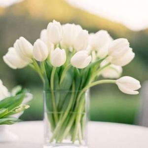 tulip_centerpiece_02