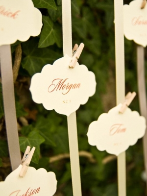 wedding_clothespins_07