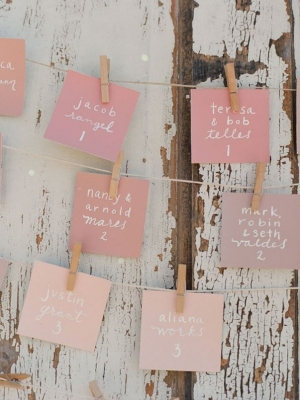 wedding_clothespins_23