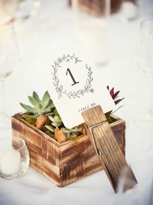 wedding_clothespins_38