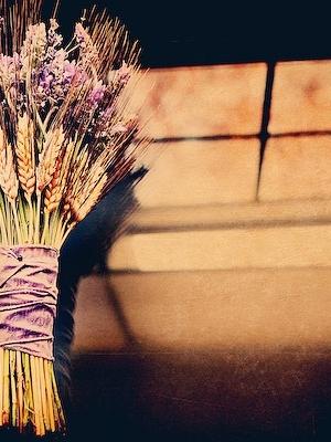 wheat_wedding_30
