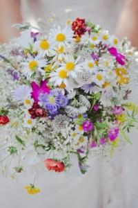 wild_flowers_01
