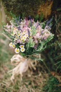 wild_flowers_02