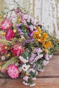 wild_flowers_04