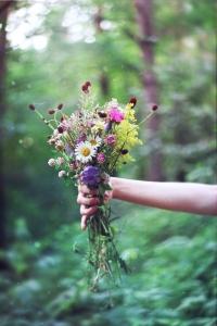 wild_flowers_11