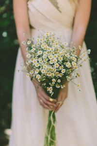 wild_flowers_23
