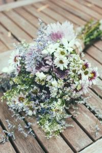 wild_flowers_24
