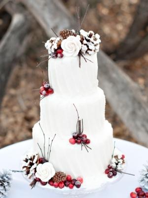 winter_cake_06
