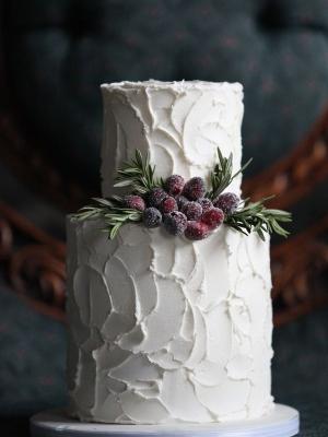winter_cake_36