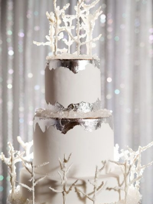 winter_cake_37