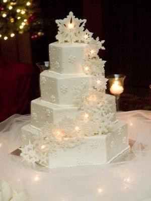zimniy-svadebniy-tort-0055