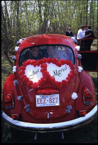 wedding-car-beetle