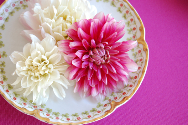 three-dahlias-vintage-plate
