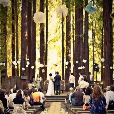 lesnaja-svadba-1