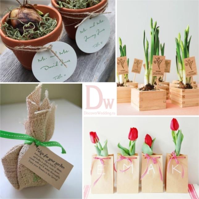 Tulip_wedding_04
