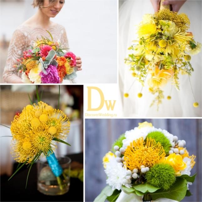 Yellow_flowers_09